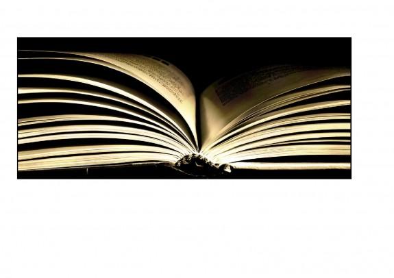 OBRÁZEK : kniha1.jpg